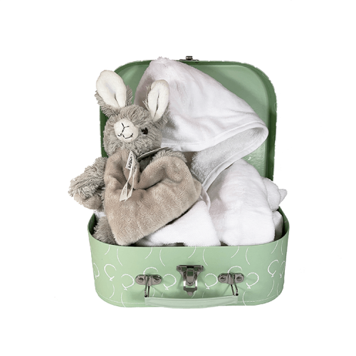 Mint green suitcase with white balloons, white bathrobe, happy horse rabbit rio tuttle in gray